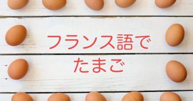 卵、卵の複数形、卵を6個、フランス語で何という?