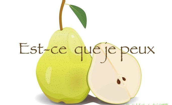 許可を求める美しいフランス語表現はどこへ?